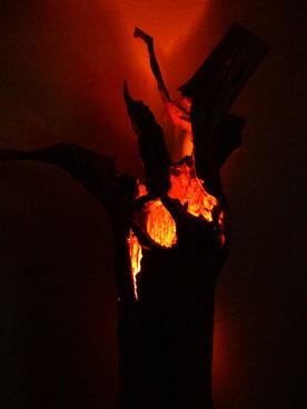 Holzkunst - Christian Stange - Baumstamm - Lampe - Design Lampe - Holz Unikat