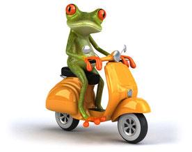 Fahrerlaubnis Klasse AM - Rollerführerschein