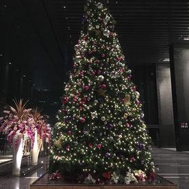 昨年会場にあった クリスマスツリー