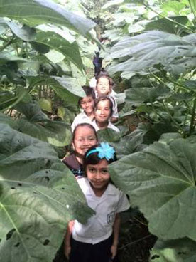 Children surrounded by grown green