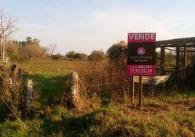 Carina Rossier Inmobiliaria Vende Terreno en Pronunciamiento, Entre Ríos