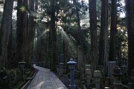 Okuno-in à Koya-San