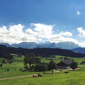 Nicht umsonst denken die Amerikaner die Schweiz sei ein Disneyland. Denn die Schweiz besitzt eine wunderbare Natur, die zu langen Wanderungen einlädt und mit ihren Bergen schon etwas an Märklin-Landschaften erinnert.