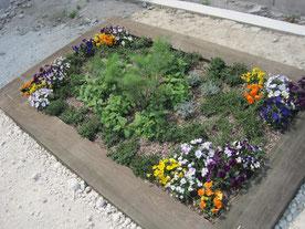 2014年春。花壇の始まり。