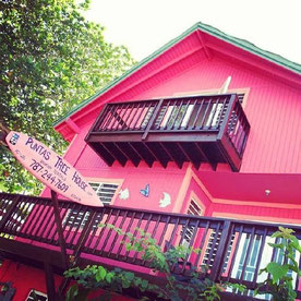 The Puntas Tree House, Rincon, Puerto Rico. On 413, the road to happiness.