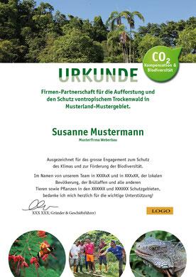Zertifikat Umwelt1