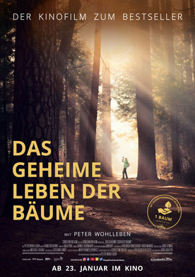 Das geheime Leben der Bäume Plakat