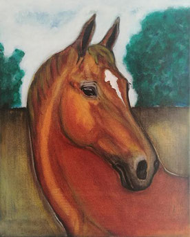 Goldstern by Canto - Holsteiner mare, oil on canvas, 40 x 50 cm, 2017