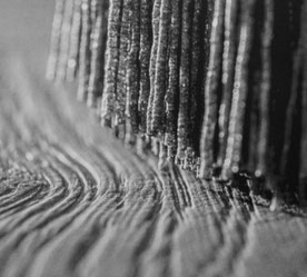 Rolf  Lüttmers Natur.bau     Lehmbau. Parkett u. Fußbodentechnik.     Neu verlegung . Restauration  Holz und Natur-böden Handel.