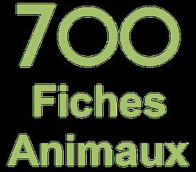 7 00 fiches animaux sauvages et de compagnie mammiferes oiseaux reptiles batraciens insectes mammiferes marins chevaux chat chien animaux de la ferme poisson animaux prehistorique