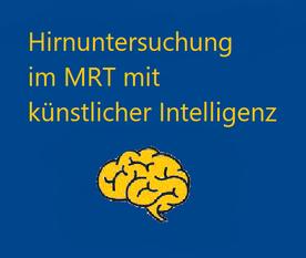 Hirnvolumetrie, Hirn Checkup, Gehirn, Volumen, Demenz, MR, Multiple Sklerose, Encephalitis dissemata, Künstliche Intelligenz