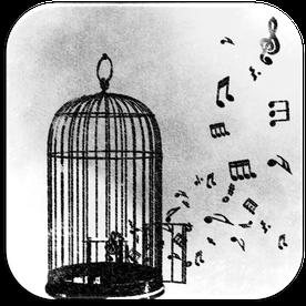 Sängerin für Ihren individuellen Anlass