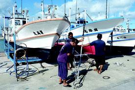 船を陸揚げし台風対策を行う漁業者=12日朝、石垣漁港