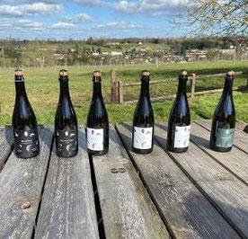 Involuté analyse du vin