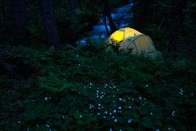 Nachtlager am Fluß im Bärengebiet