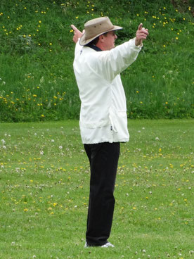 Umpire, Paul Cawsey, signalling a wide in Zuoz 2014