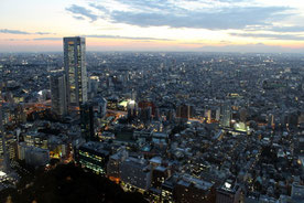 Aussicht, Tokio, Japan, Aussichtspunkt, Stadtverwaltung Tokio, Fuji