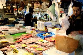 Tsukiji Markt, Fischmarkt, Tokio, Japan, Thunfisch