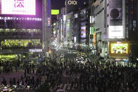 Shibuya Crossing, Strassenkreuzung, Tokio, Japan, Nacht, Menschen, Hektisch, belebte Kreuzung