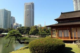 Teehaus, Teezeremonie, Hamarikyu Gardens, Japan, Tokio, japansicher Garten
