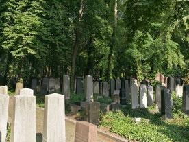 Top 5 peaceful cemeteries in Berlin
