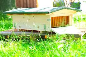 Insektenhotel - Bienenhotel Zero Waste Germany Nutzmuell