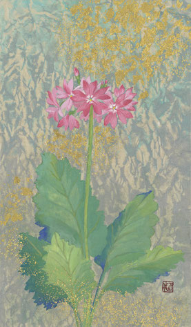 小笠原明代「さくら草 ~花巡り~」紙本着彩・箔 27.3x16 cm