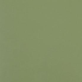 Verde Militar Poliuretano Mate