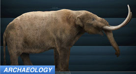 Excess Moisture May Be Responsible for Megafauna Extinction
