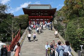 Im Mai 2020 nach Japan