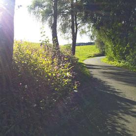 Sauerland per bike