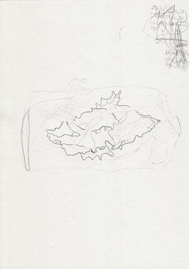 November 2014 Till (9 Jahre) »Schnecke in transparenter Folie« Bleistift 29,7 x 21 cm