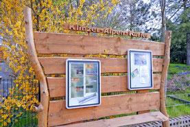 Die Pinnwand vom K.A.K