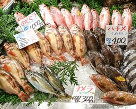 市場 魚介 新鮮