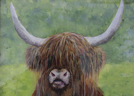 By Sheila Warren 'Highland Cow'