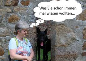 Hundephysiotherapie Heike Amthor in Leipzig Stötteritz