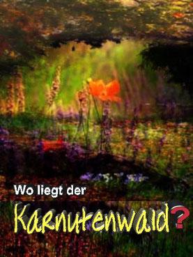 """Dieses Bild zeigt eine märchenhafte Landschaft zu dem Thema """"Wo liegt der Karnutenwald?""""."""