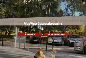 WagWag en Señor Perro