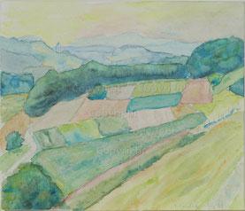 Nr.2082  Landschaft. Thurtal 1987