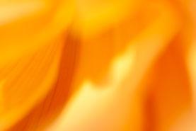 "Farbmanufaktur broinger. Energiebild-Motiv ""Siena""."