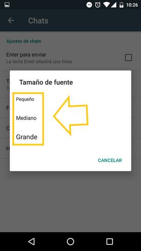 Tamaño De La Letra De WhatsApp