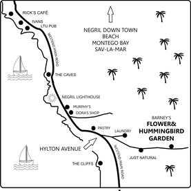 Street map Barneys Flower&Hummingbird Garden Jamaica