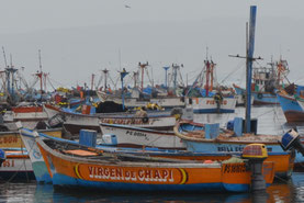Pequeños botes pesqueros