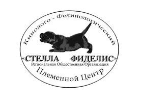 """СРОО КФЦ """"СТЕЛЛА ФИДЕЛИС"""""""