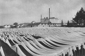 Leinen auf Bleichpfählen. Entnommen aus: H. Schmidt: Hundert Jahre Arbeit – Hermann Windel GmbH Windelsbleiche. Bielefeld 1933.