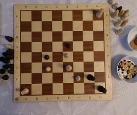 Trainingsmaterialien Schach Anfänger