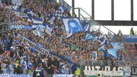 Quelle: Schalke04.de
