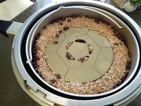 FTW式発酵酵素玄米 FTWプレート