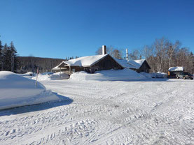 Snow and Ice = frozen sap - Sugar Moon Farm
