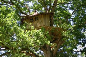 boomhut in Picardïe
